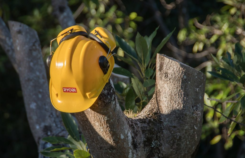 Contact Us-Tampa's Best Tree Trimming and Tree Removal Services-We Offer Tree Trimming Services, Tree Removal, Tree Pruning, Tree Cutting, Residential and Commercial Tree Trimming Services, Storm Damage, Emergency Tree Removal, Land Clearing, Tree Companies, Tree Care Service, Stump Grinding, and we're the Best Tree Trimming Company Near You Guaranteed!