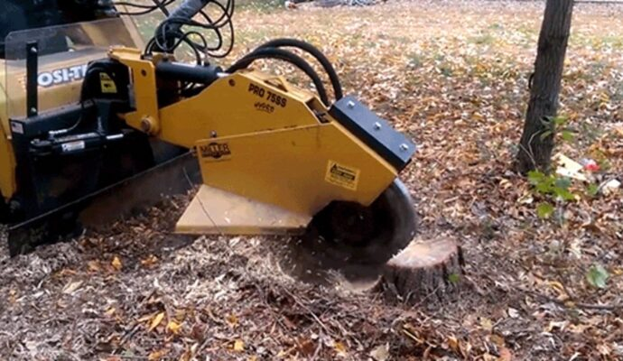 Stump Grinding-Tampa's Best Tree Trimming and Tree Removal Services-We Offer Tree Trimming Services, Tree Removal, Tree Pruning, Tree Cutting, Residential and Commercial Tree Trimming Services, Storm Damage, Emergency Tree Removal, Land Clearing, Tree Companies, Tree Care Service, Stump Grinding, and we're the Best Tree Trimming Company Near You Guaranteed!